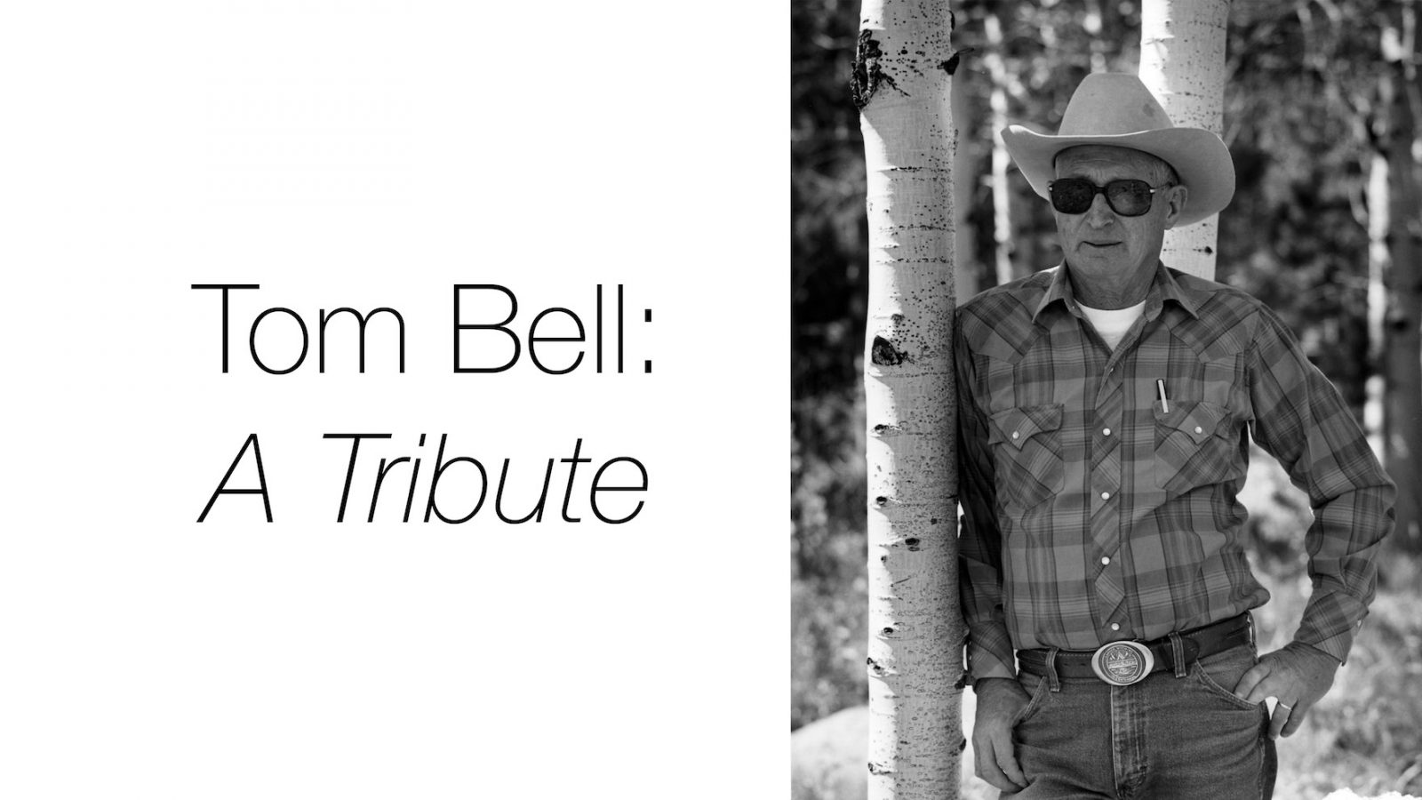 Tom Bell: A Tribute