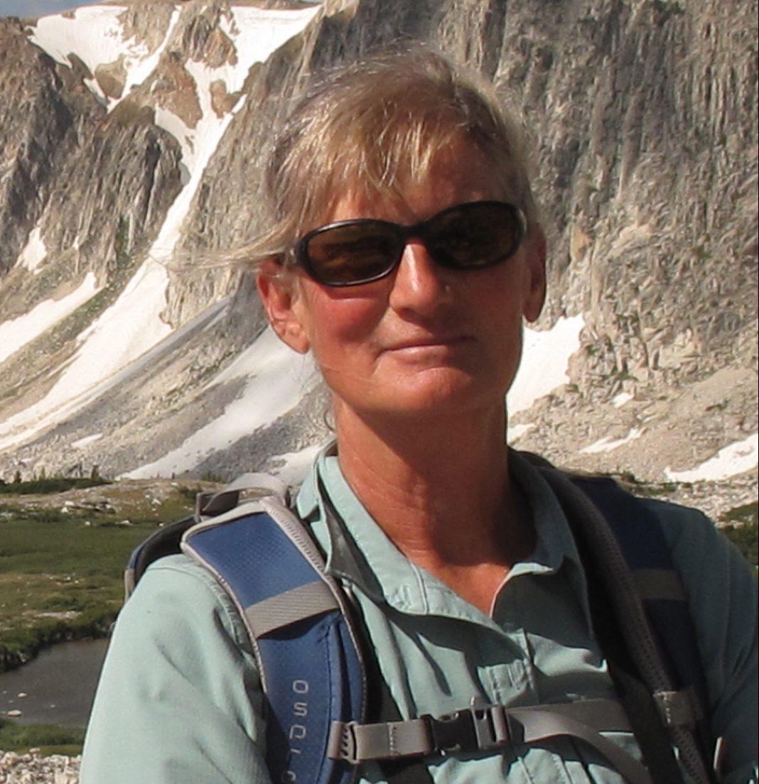 Carol Bilbrough