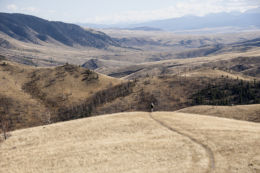 LARRY WOLFE: For Wyoming, change is coming. Can the Wyoming Outdoor Council help lead the way?