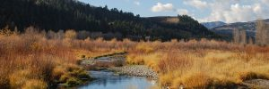 Field Notes: November updates from the Wyoming Outdoor Council